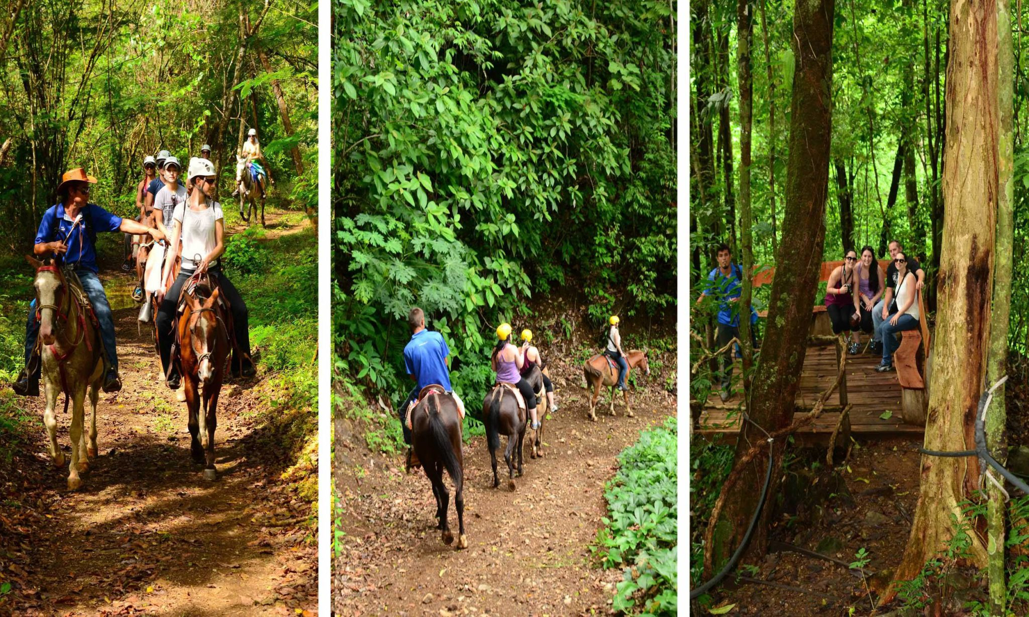 jaco costa rica horse back tours