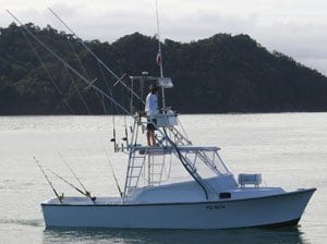 28 Foot Shamrock Los Suenos Fishing