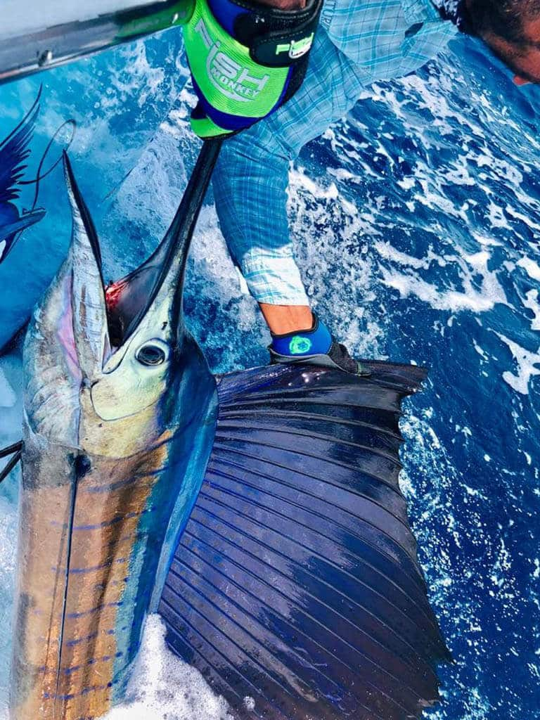 Fishing Charters Adventures Costa Rica