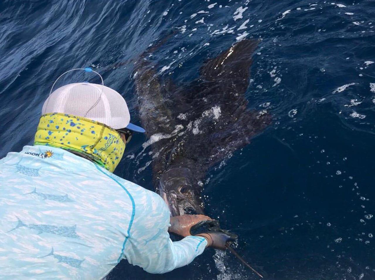 Sail Fish: Los Suenos Jaco